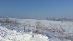 Lemešany zima 2017